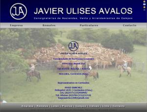 javierulisesavalos.com.ar